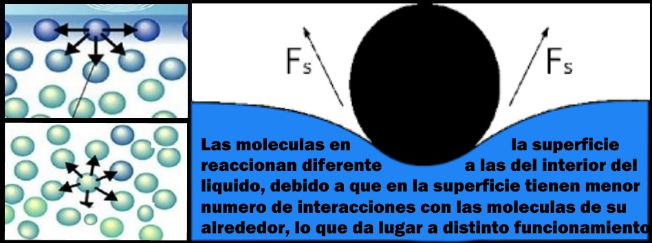 tension superficial, por que el agua actua como un fluido pegajoso