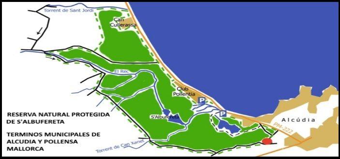 mallorca kiteschool Parque Natural S'Albufereta zona de kitesurf