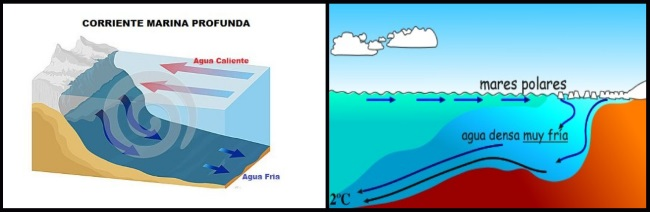 corriente marina