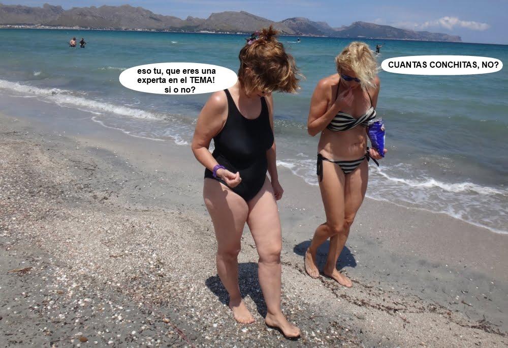 10 cursos de kitesurf en Mallorca en la orilla